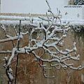 Hier : jour de neige