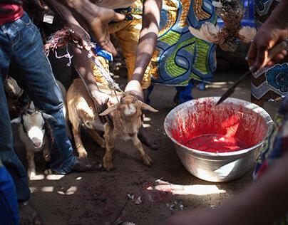 Medium Voyant Marabout Africain ASSOU, Retour de l'être aimé en 72 heure