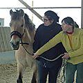 Equitation toujours ... au centre équestre municipal de neuilly-sur-marne avec trott'autrement