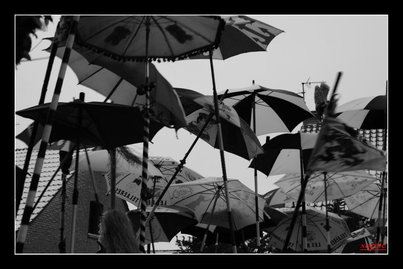 teteghem2011 010_GF