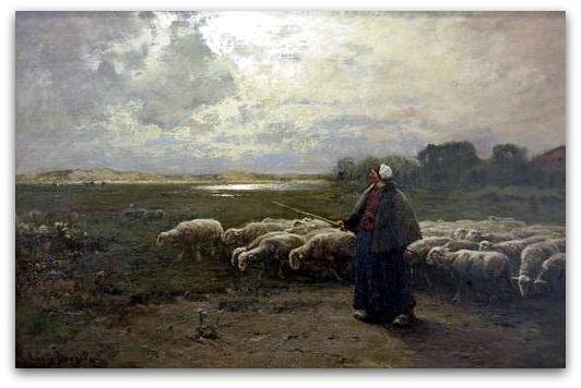 Moutons z