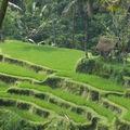 Voyages, BALI, Indonésie