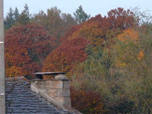 2008 10 14 Couleur d'automne