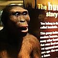 1) histoire : a) la prehistoire