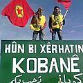 Au nord de la syrie, les kurdes prennent le contrôle de plusieur villes