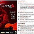 Festival Flamenco Pourpre
