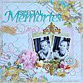 special memories 001