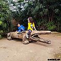 Une journée à la ferme aux crocodiles (drôme)