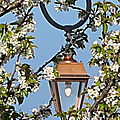 Lumière du printemps