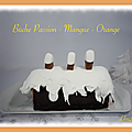 Bûche passion - mangue - orange