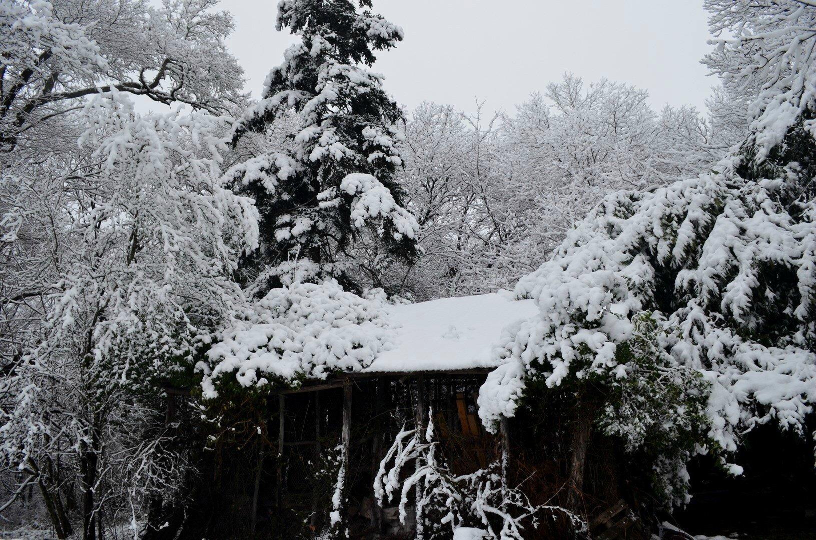 Le vieux hangar de mon grand-père sous la neige...