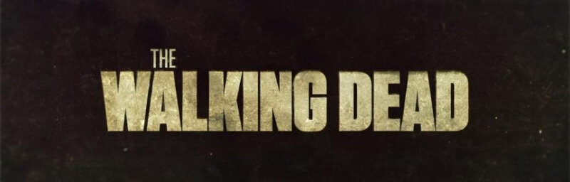 The-Walking-Dead-wpcf_878x281