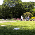 Picnic at <b>Yoyogi</b> Park
