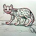<b>Zoo</b> du Faron #4