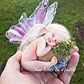 petite fée dans cage romantique ( 40€ )