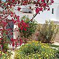Vie à Djerba