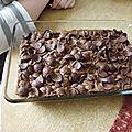 Gâteau au chocolat et aux céréales chocapic