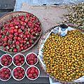 Fraises et pommes d'amour