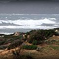 Le Site On à Side On Shore du Grand Su-Ouest ... Peut devenir énorme !
