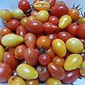 tomate cerises - www.passionpotager.canalblog.com