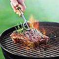 Choisir un barbecue à petit prix