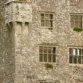 Le Burren, Leamaneh castle