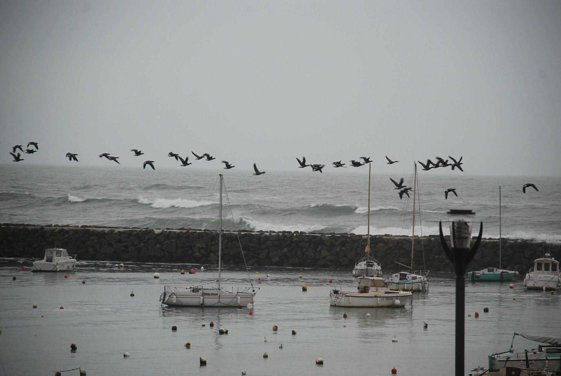 Vendée, Jard sur mer
