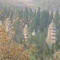 Pagodes dans la forêt