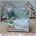 Shaker box de voeux pour ma <b>DT</b> la <b>compagnie</b> des <b>Elfes</b>