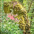 Les lutins de la forêt de mervent (légende - fradets ou farfadets)