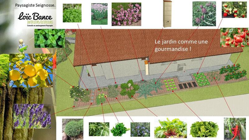 Paysagiste-seignosse-extension-maison-individuelle-et-aménagement-paysager-seignosse-8