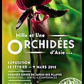 Mille et une orchidées d'asie - jardin des plantes - muséum national d'histoire naturelle - 12/02/2015 au 09/03/2015