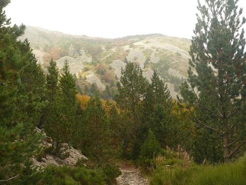 2008 10 07 Sur le chemin, vu sur le Mont Mézenc