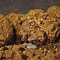 <b>Cookies</b> Crousti-Fondants aux Noisettes ! Bio et Bon .... Enfin !!!!