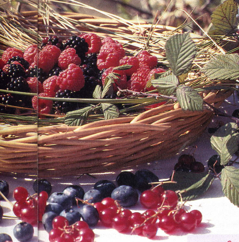 fruits_rouges