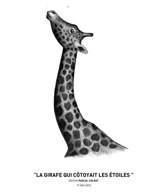 _la_girafe_qui_co_toyait_les_e_toiles__