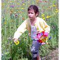 la course aux fleurs