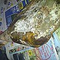 jambon (2)
