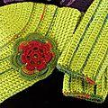 Bonnet Clochette + mitaine ado vert anis-rouge