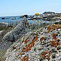 La corse - les îles lavezzi 2