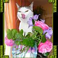 fleur_parmi_les_fleurs__page_3_k