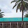 l'église de l'école