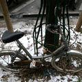 petit vélo neige_7713a