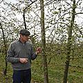 En avril ne te découvre pas d'un fil! Le gel tardif de ce printemps 2021 met en péril la pomme de Normandie.