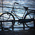 vélo (holga)_7457
