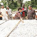 Une chaine de transformation de manioc à Endom dans l'Est