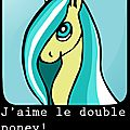 j'aime le double poney