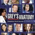 <b>Grey</b>'<b>s</b> <b>Anatomy</b> - Saison 6