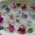 Fleurs crystalisées de Gato Azul