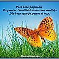 Vole papillon ~~~~~~
